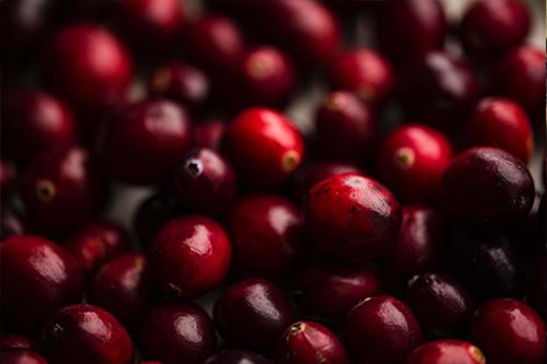 Cranberry Akutaq